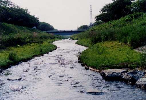あいちの多自然型川づくり