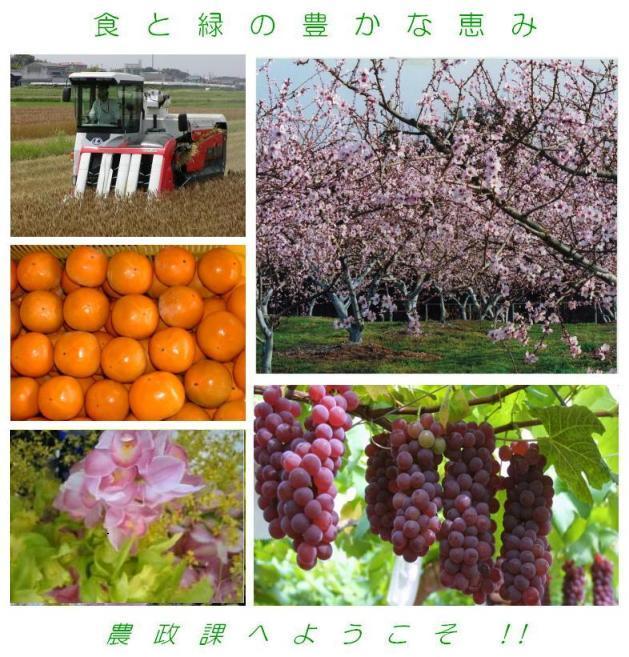 農政課写真 豊田加茂農林水産事務所農政課 - 愛知県 ページの先頭です。 メニューを飛ばして本文