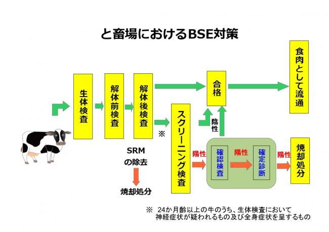 と畜場におけるBSE対策 - 愛知県
